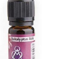 Eukalyptus 100% reines ätherisches Öl der Firma Berk, 10 ml